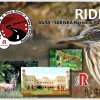 Royal Rider's Ride to Sariska National Park, Alwar, Rajasthan.