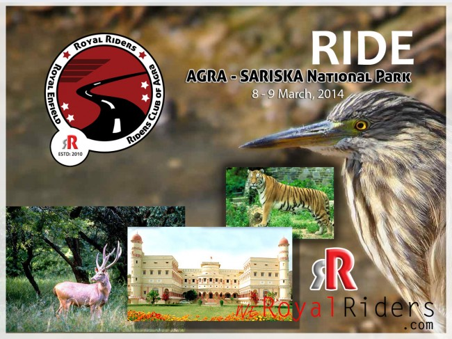 Royal Rider's Ride to Sariska National Park, Alwar, Rajasthan.