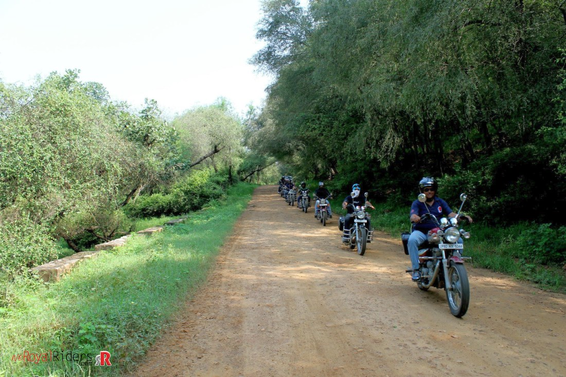 Riding through the Sariska Tiger Reserve on Royal Enfield.