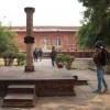 talab-shahi-weRR-043